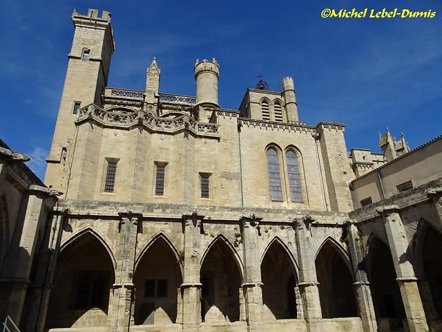 Cathédrale Saint Nazaire et Saint Celse - Vue du Cloître (2)