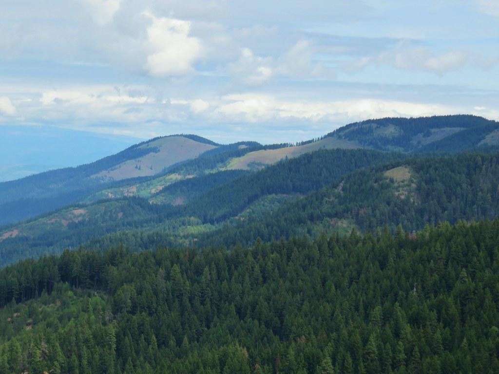 Bald Butte