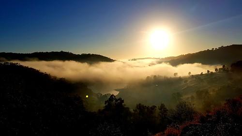coldfrostyf fog cold sunrise adelaidehills southaustralia australia trees colorful colourful