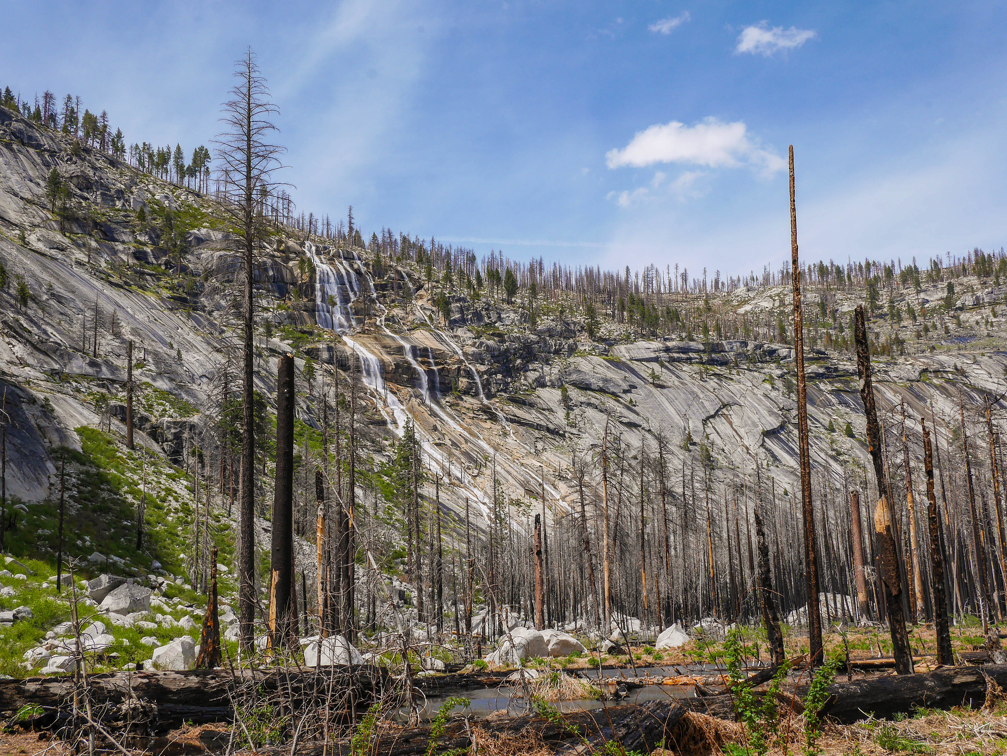 Burned areas in Little Yosemite Valley are somewhat apocalyptic but let you see the canyon
