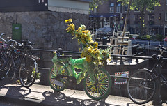 Amsterdam Flower Bike
