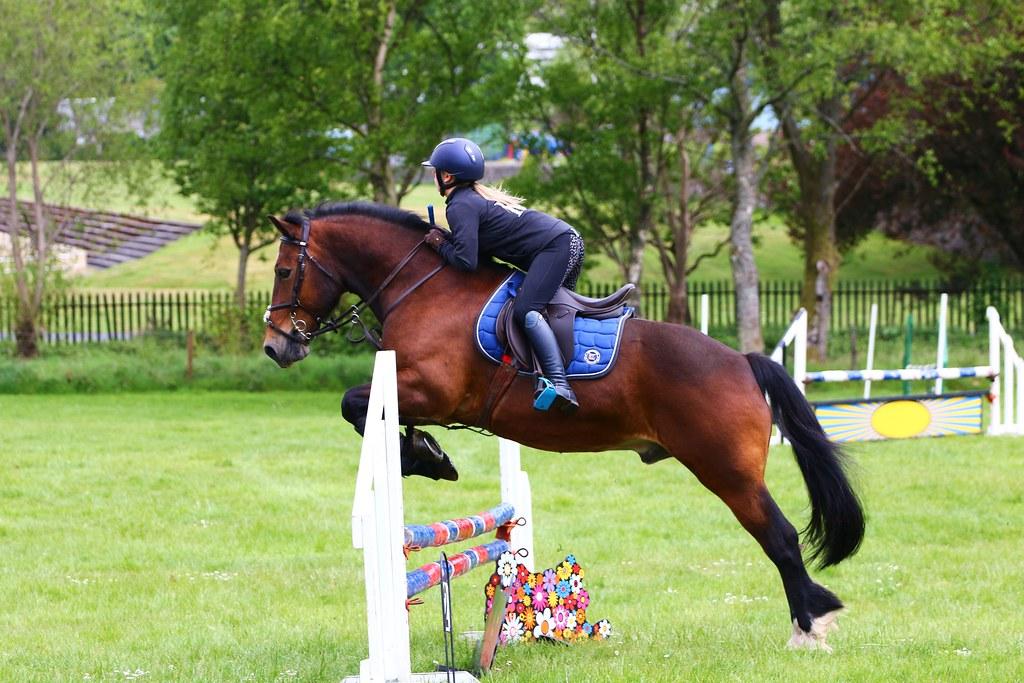 Rothesay Horse Jumping | ufopilot | Flickr