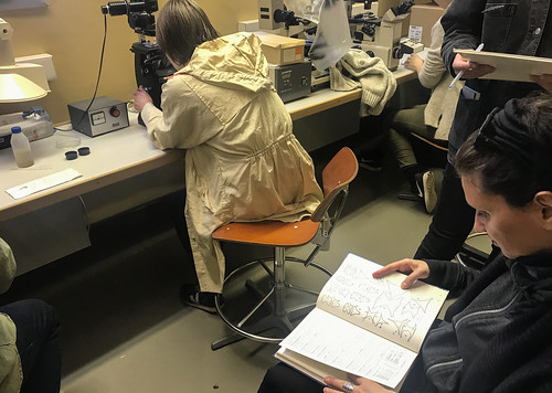 Plankton lab