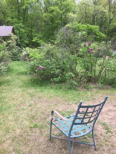 rest spot Lilacland