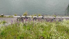 cycling along the Rhein harbour in Birsfelden