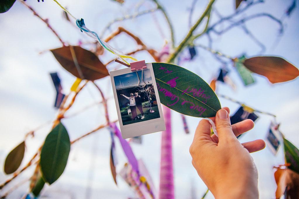 Family Tree-Papaya Stories International Day of Families Panuku