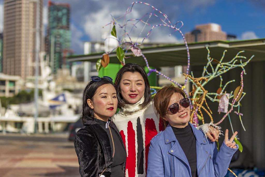 Family Tree-Papaya Stories International Day of Families Panuku China