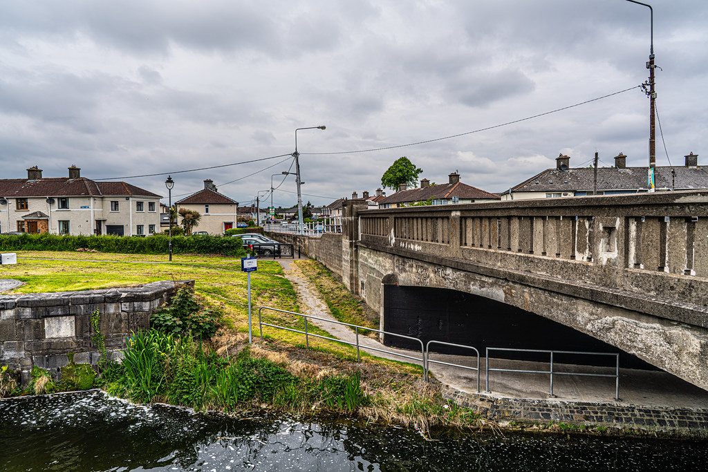 GRAND CANAL AT SUIR ROAD  013