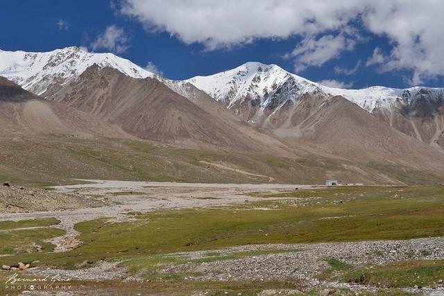 Prairie alpine au col de Kunjerab (4 693 m) sur la Karakoram Highway