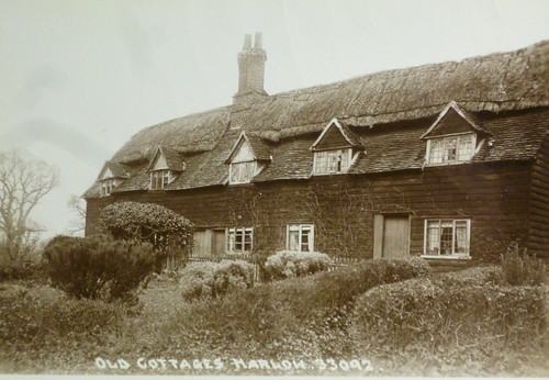 The Reed Mortings cottages (9237)