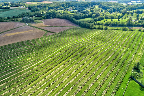 westminster maryland orchard aerial md