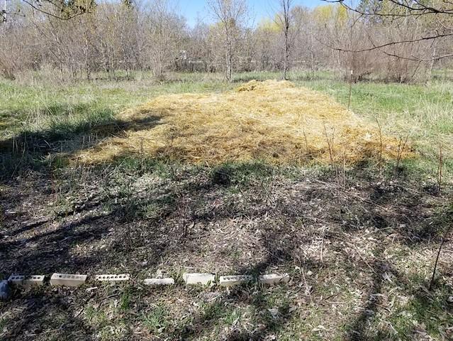 20190520.cleanup.big.garden.progress