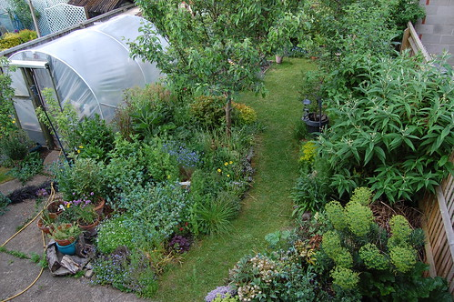 Looking Down on the Back Garden - May 2019