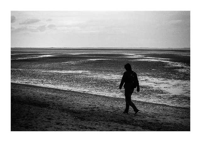 FIM - At low tide