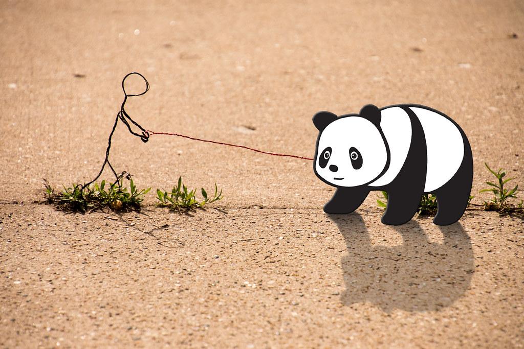Good Panda [EXPLORED]