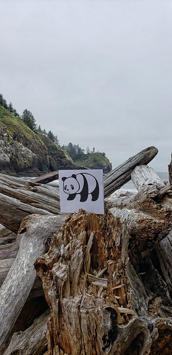 Cape Disappointment state park, Washington