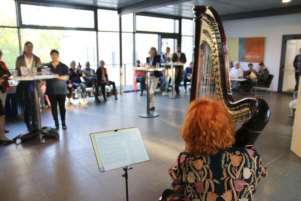 Harfenistin Susanne Weinhöppel
