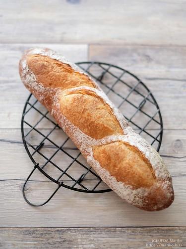 フランスパン 20190518-DSCT2420 (2)