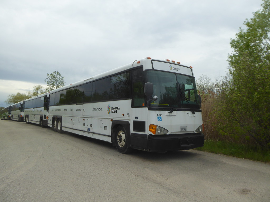 EE181 - Niagara Parks Commission 8003 (346 3BK) ex-GO Transit - Niagara Falls - 22 May 2019
