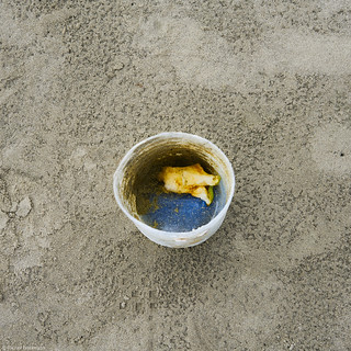 Brasilien 2019 Coisas na Praia 86