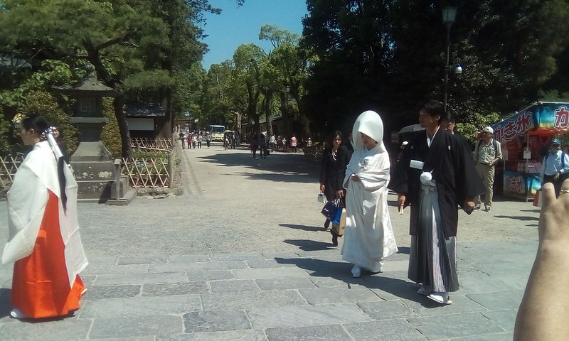 Wedding in Tsurugaoka Hachimangu Shrine, Kamakura
