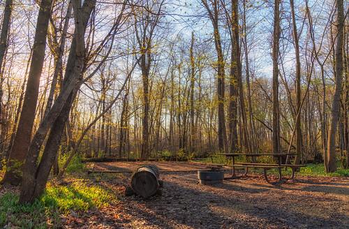 may minnesota nerstrand nerstrandbigwoods nerstrandbigwoodsstatepark campground camping campsite picnictable spring statepark trees unitedstatesofamerica
