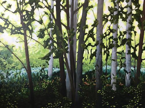 Birches on Main Island