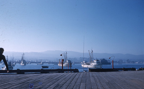 1961.   Monterrey Harbor from C.G. pier  Pics from the past