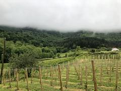 Jaizkibel entre la niebla
