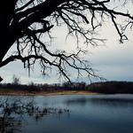 Albert Lea Lake in Spring - Myre-Big Island State Park, Minnesota