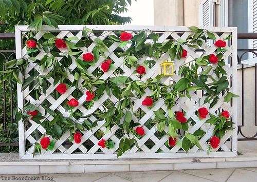 dollar-store-garden fence