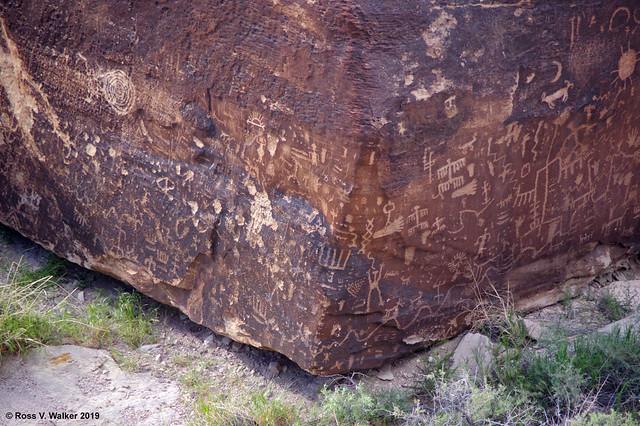 Newspaper Rock, Arizona