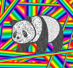 Good Panda Walking on Rainbows