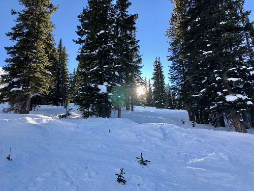 It was a gorgeous day at Mary Jane!