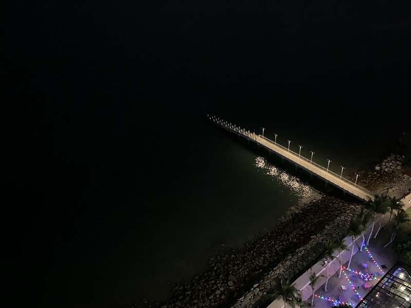 iPhone XS Max - Bridge - Night