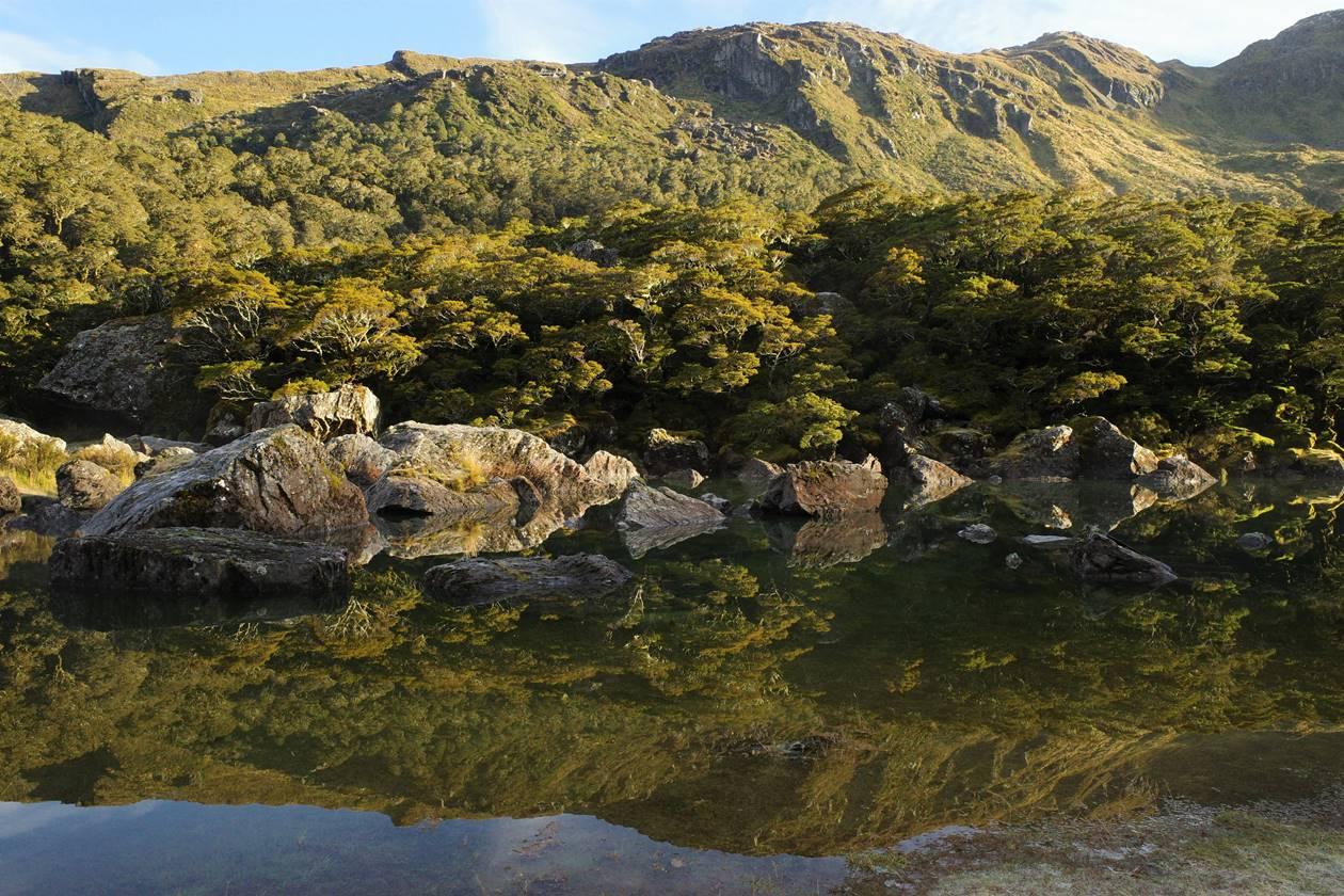 ニュージーランド 鏡のように美しいマッケンジー湖