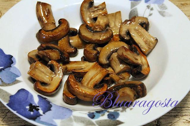 02-funghi piastrati