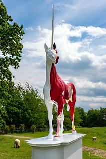 unicorn   yorkshire sculpture park