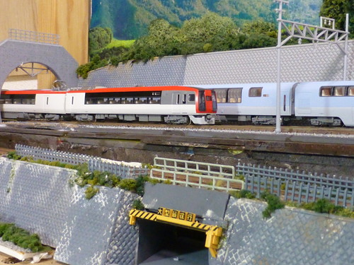 left-rear-upper-track-section-2019-05-25_05   by railsquid