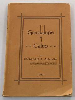 Almada Guadalupe y Calvo book cover