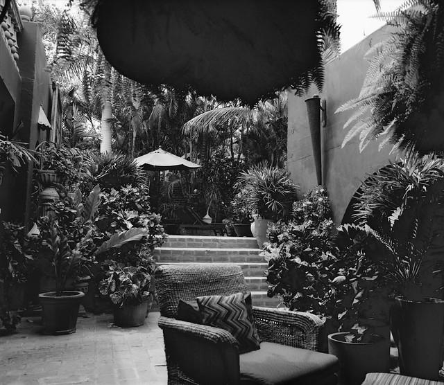 Hotel California, Todos Santos BCS (Mamiya RB 67 s Pro IMG_20190512_0006)