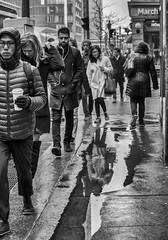 Morning Faces on Yonge Street, 2019