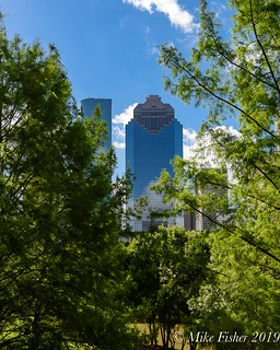 Late Spring in Downtown Houston