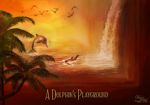 Digital Art of a Dolphin's Playground