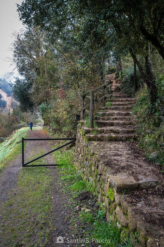 Escaleras que suben al Boscarró en Sant Joan les Fonts