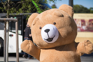 Teddy bear greeting tourists on arrival