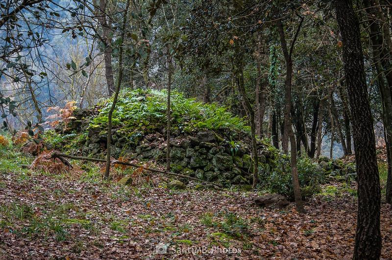 Muro de piedra posíblemente ibérico en el Boscarró de Sant Joan les Fonts