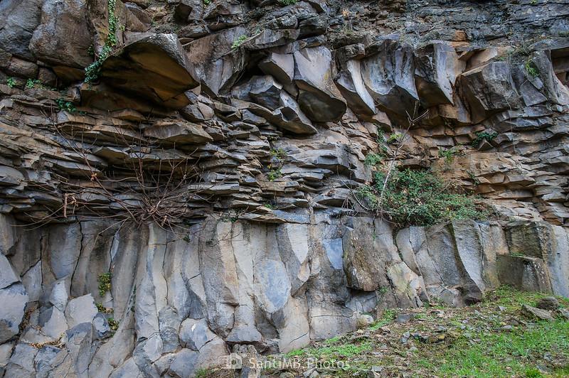 Pared de basalto de la cantera del Boscarró