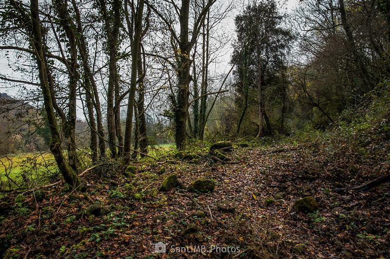 Camino abandonado junto a los Prats de Can Xervanda