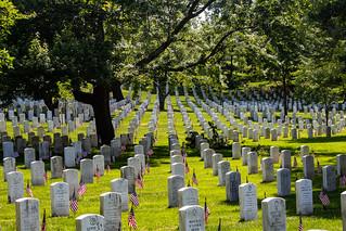 Arlington Cemetery 2019
